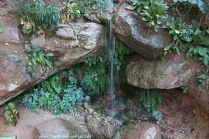 weeping-rock-spring